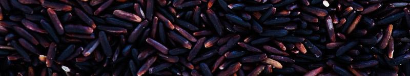 benefícios do arroz preto